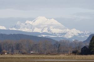 Mt Baker from Skagit flats